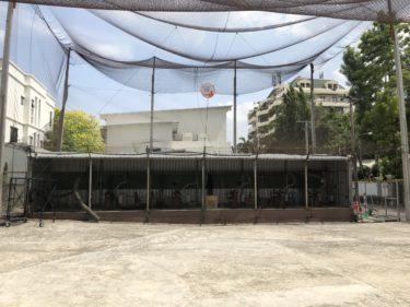 Bangkok 野球